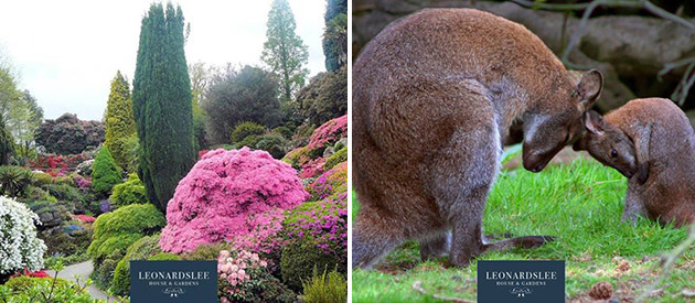 Leonardslee Gardens in Horsham UK is now part of the Benguela Collection